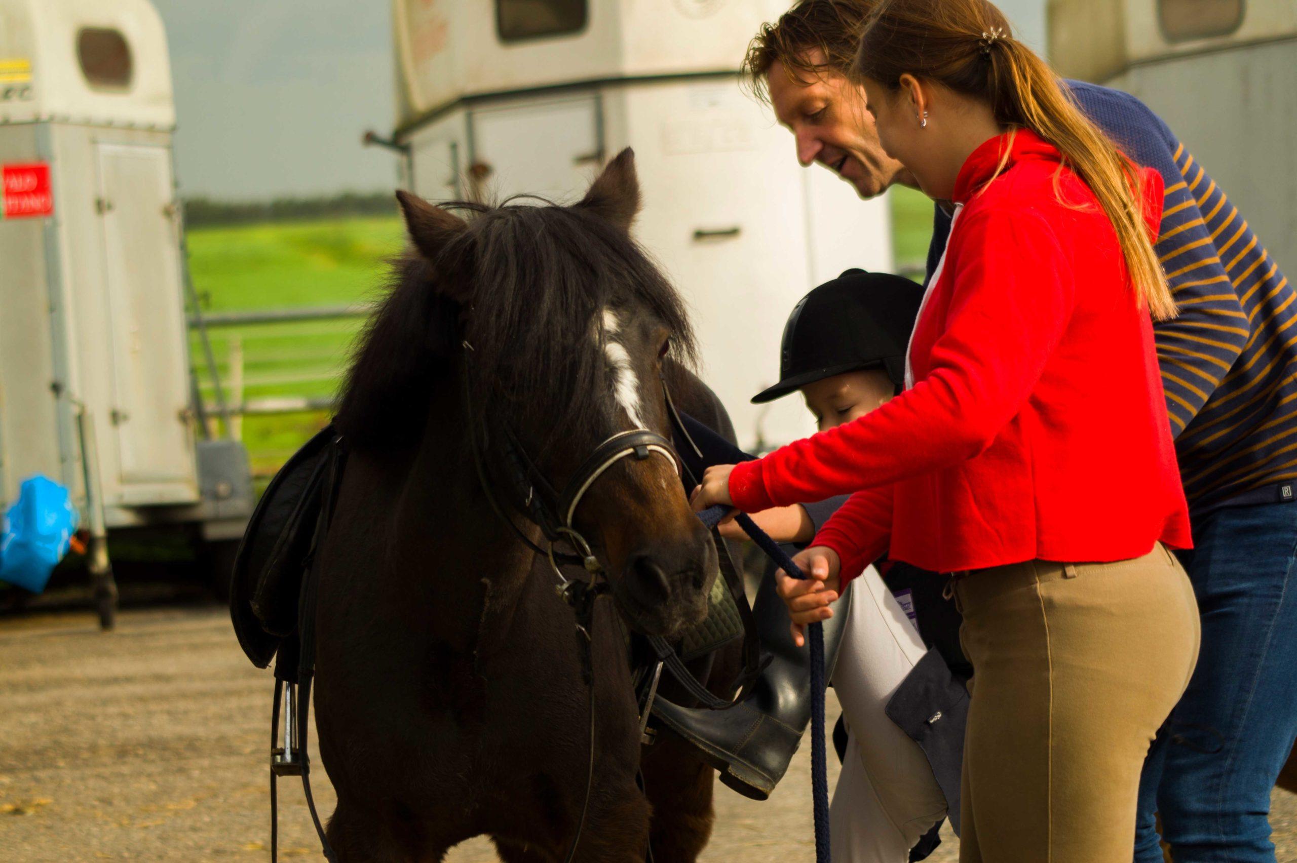Pony met personen