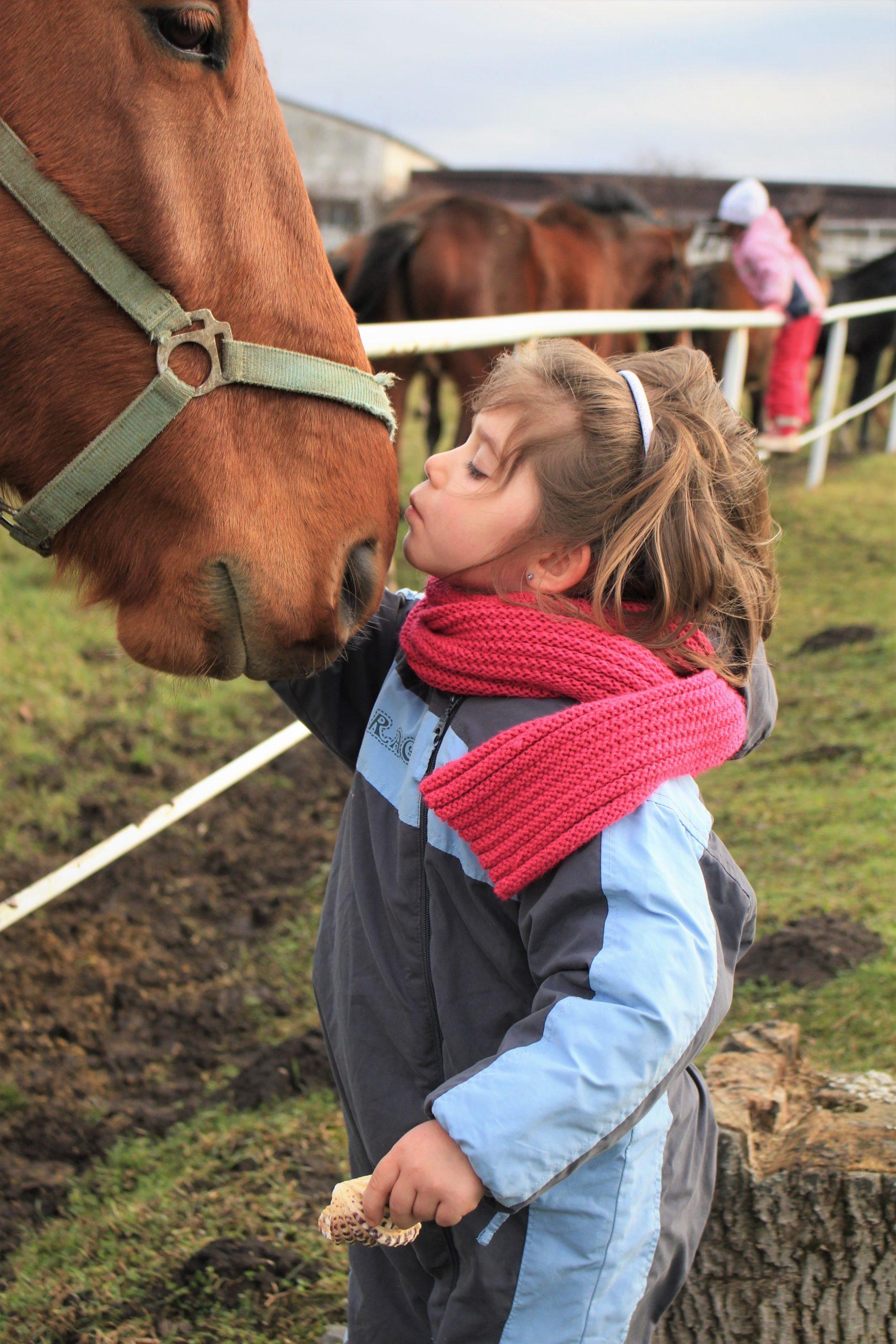 Meisje zoent paard